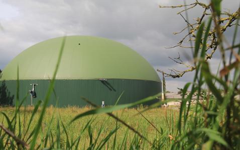 Biogas Höhnstedt