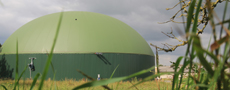 Biogas plants using organic waste